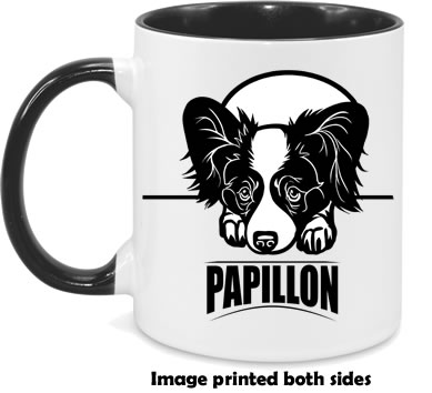 Papillon both sides